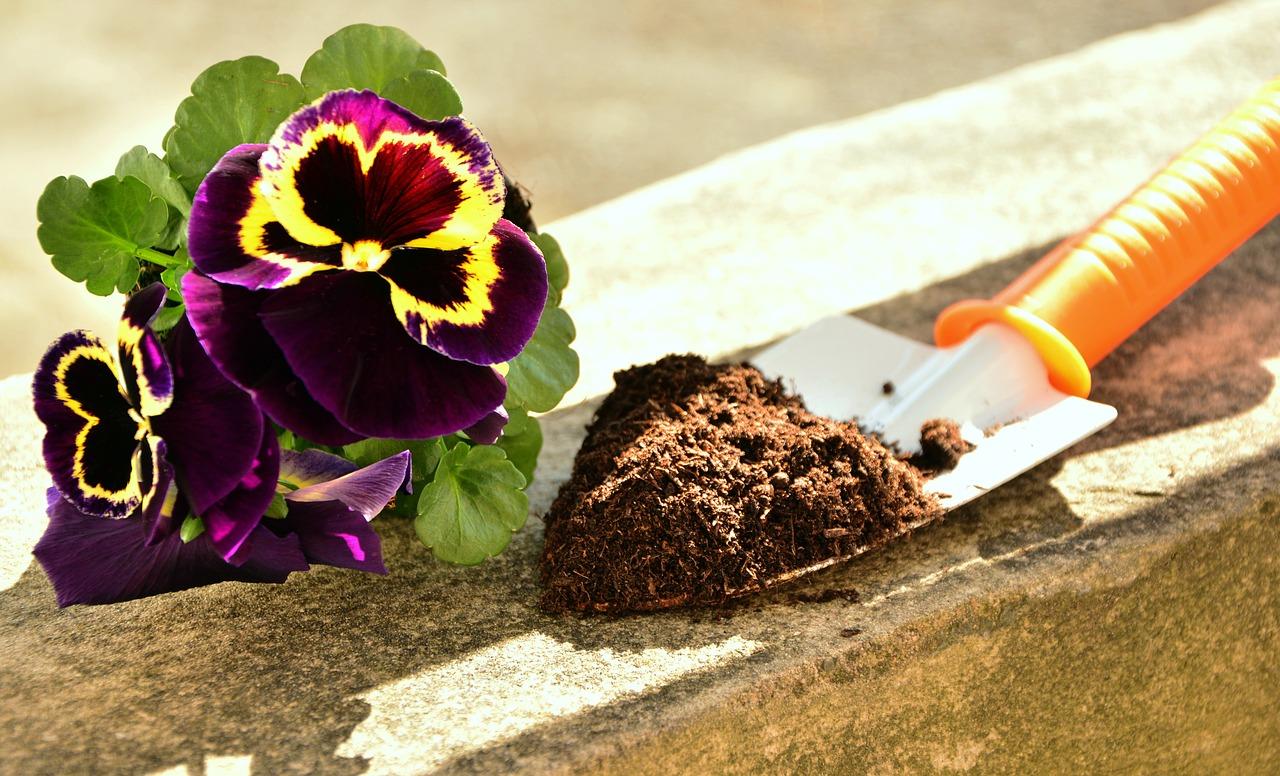 Cómo cuidar tu jardín en primavera